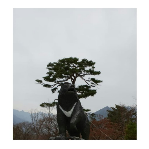 PicsArt_12-11-11.13.14 (1)
