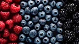 berry heathlinecom
